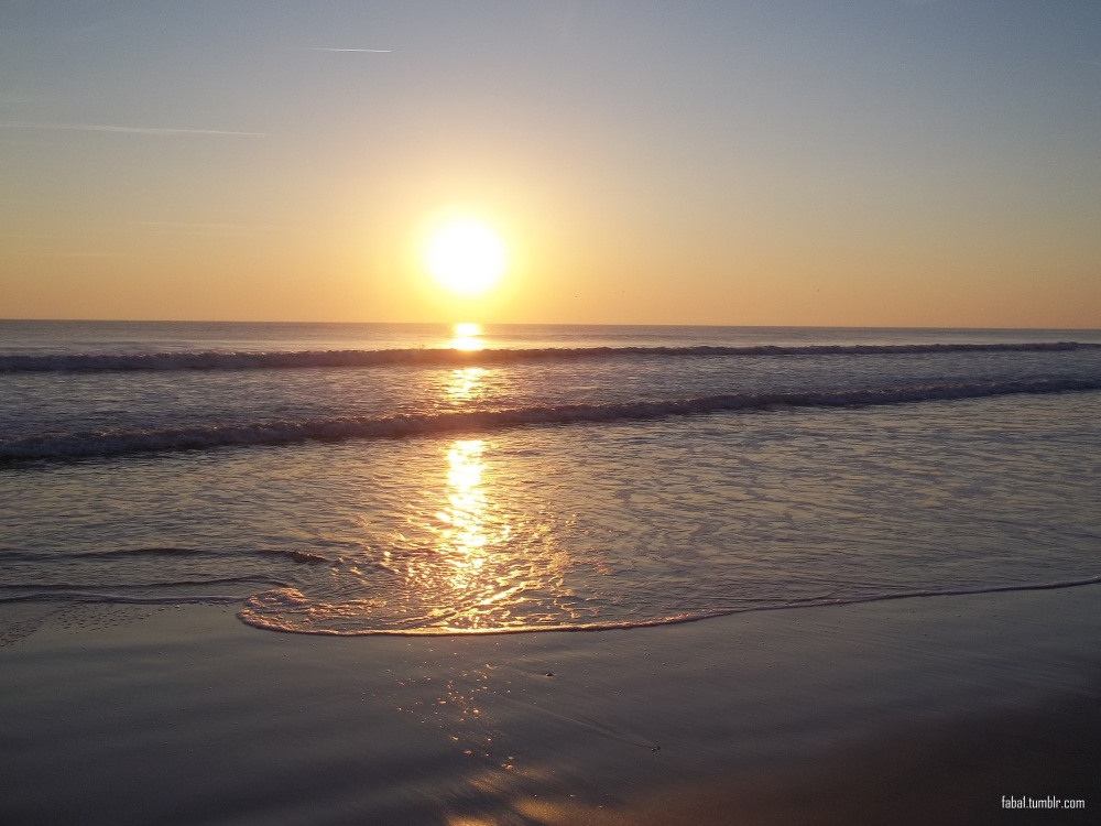 Regal Sunrise